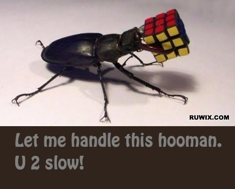 Rubiks cube bug handle